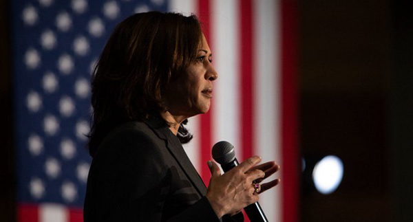 Image for Emil Guillermo: Kamala Harris fizzles as diversity's hope in presidential race
