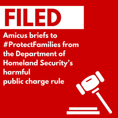 Image for Judge Grants Preliminary Injunction Against DHS in Public Charge Case; AALDEF filed amicus brief in NY case